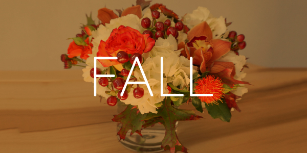 Floral - Fall Collection