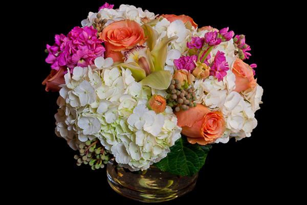 Draeger's In Bloom