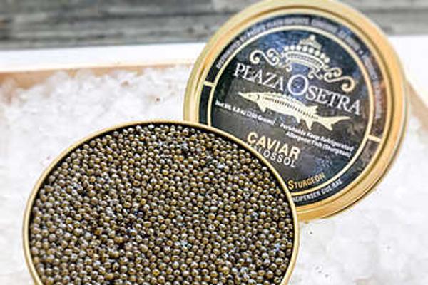 Draeger's Plaza Osetra Gold Caviar